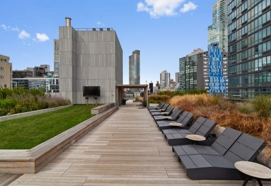 Amenities gallery - 7 of 7 - lounge chairs and green lawn at Eagle Lofts roof deck