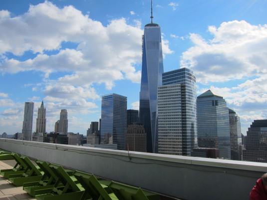 Amenities gallery - 6 of 6 - NYC tribeca neighborhood skyline
