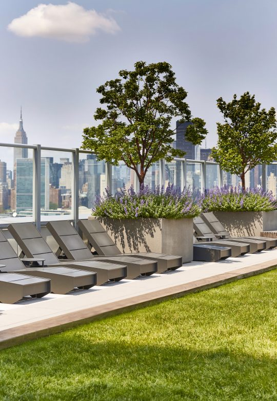 Amenities gallery - 1 of 8 - Linc rooftop with greenery and lounge chairs